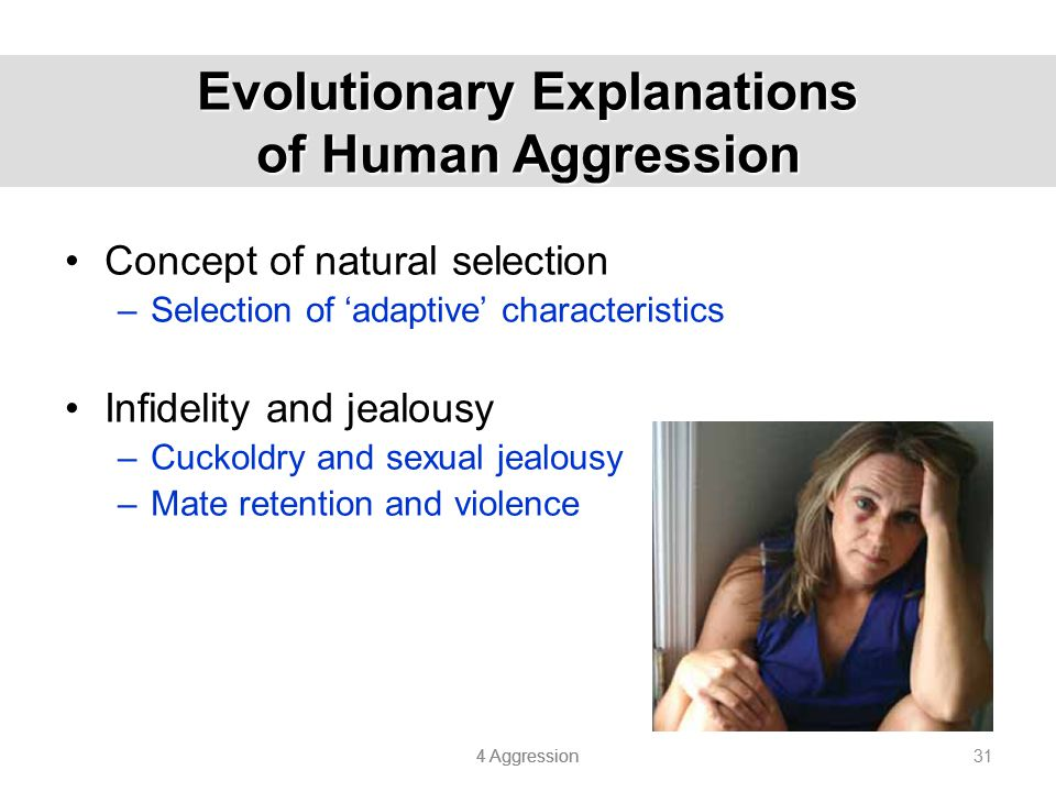 Evolutionary Explanations of Human Aggression