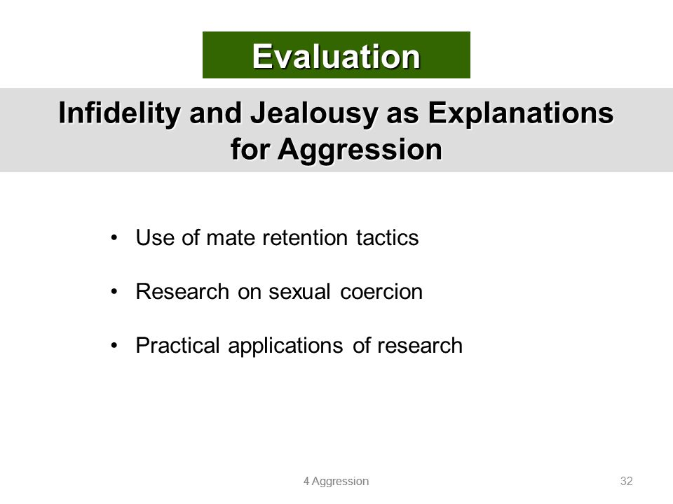 Infidelity and Jealousy as Explanations for Aggression