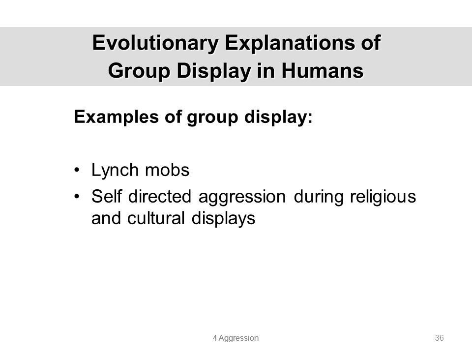 Evolutionary Explanations of Group Display in Humans
