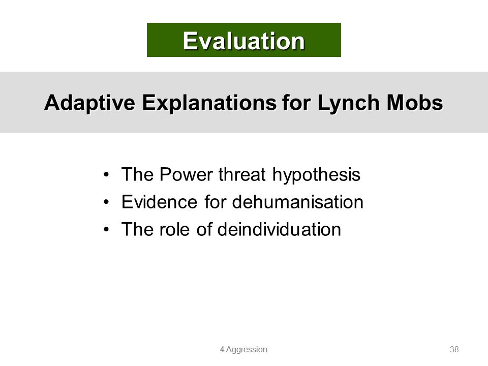 Adaptive Explanations for Lynch Mobs