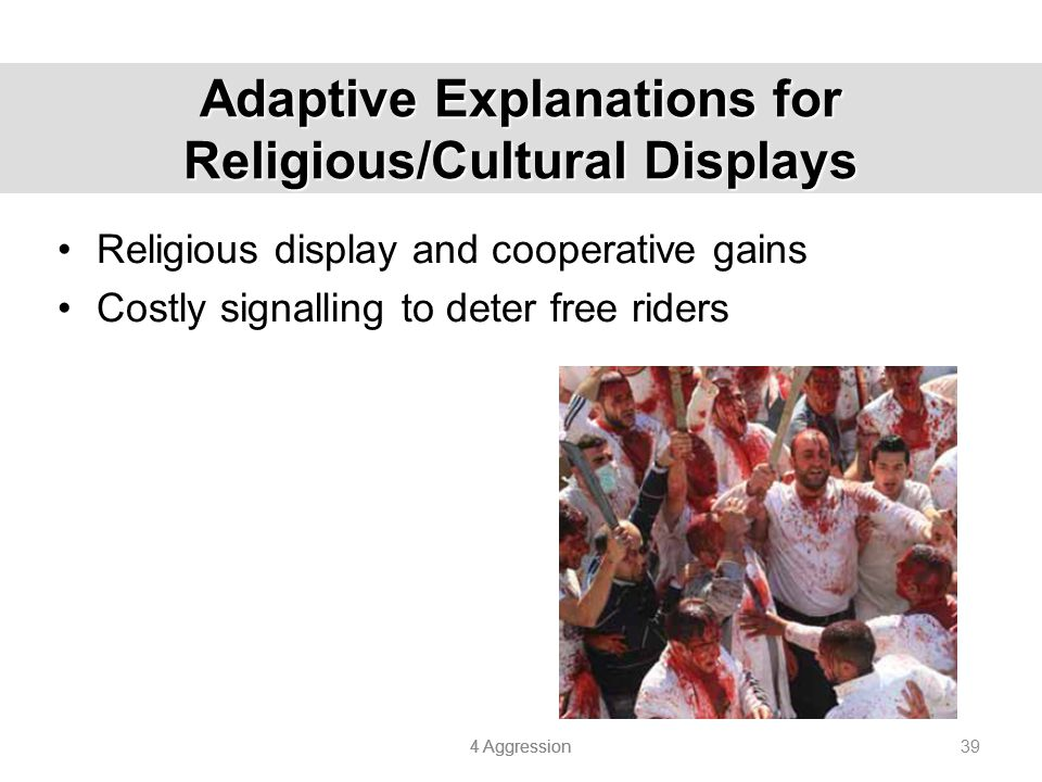 Adaptive Explanations for Religious/Cultural Displays