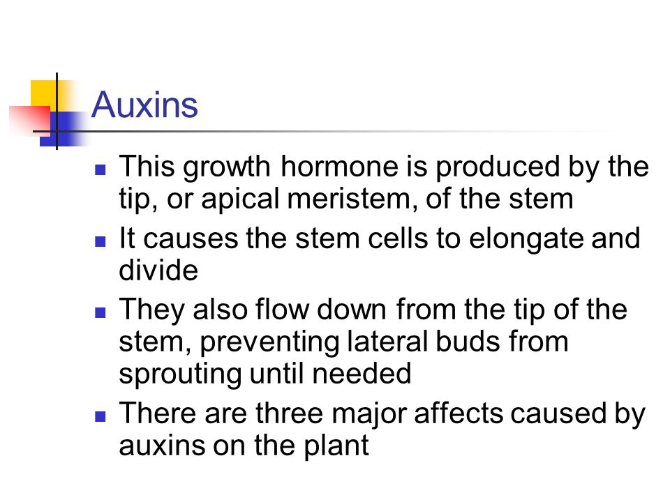 understanding of the effects of hormones in plants Treatment & side effects day-to-day matters  hormone replacement therapy → understanding hormone  hormones are derived from plants—hence the label.