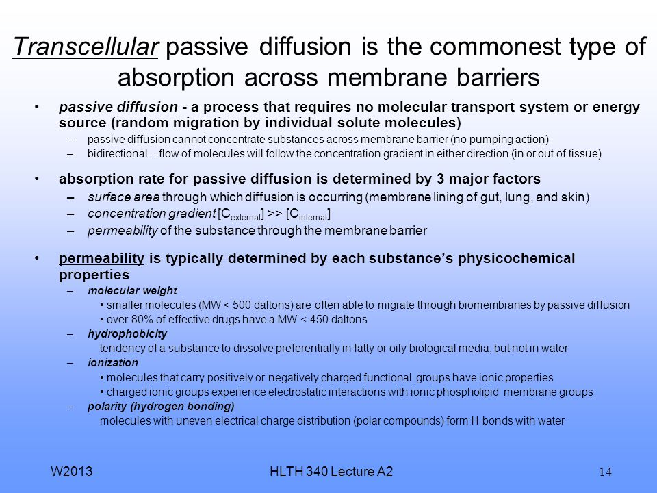 Transcellular passive diffusion is the commonest type of absorption across membrane barriers