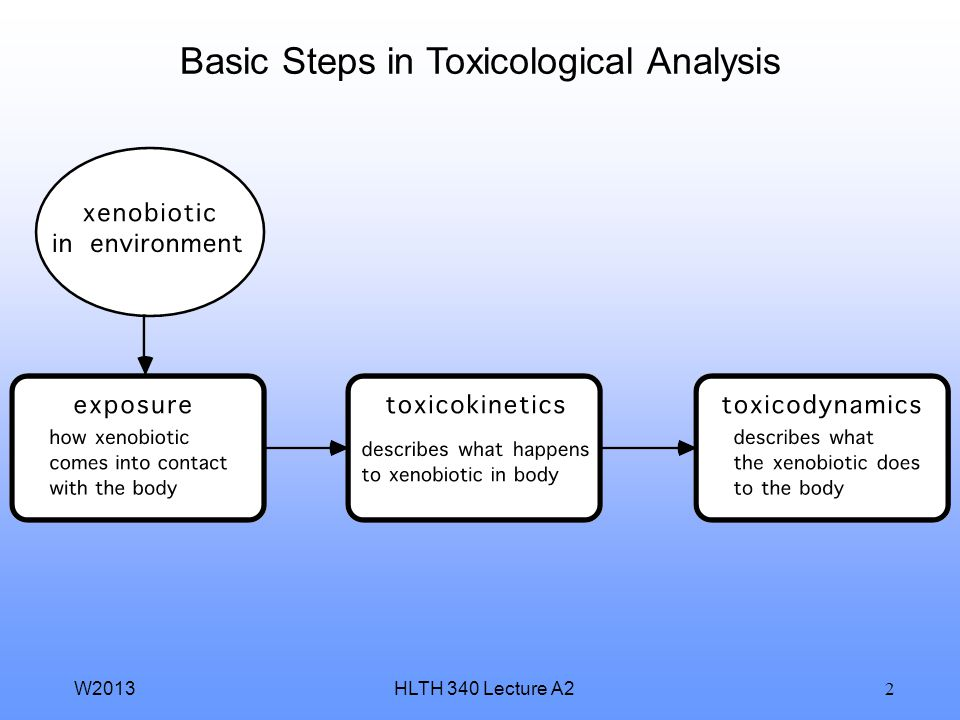 Basic Steps in Toxicological Analysis