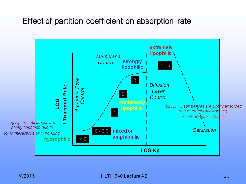 Effect of partition coefficient on absorption rate