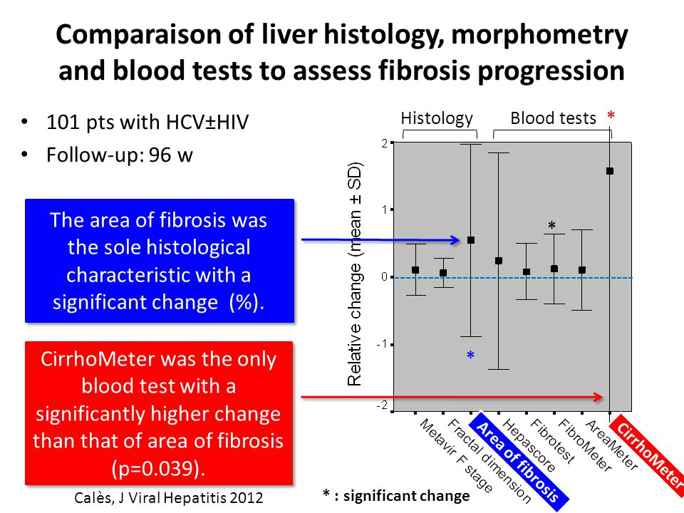 Comparaison of liver histology, morphometry and blood tests to assess fibrosis progression