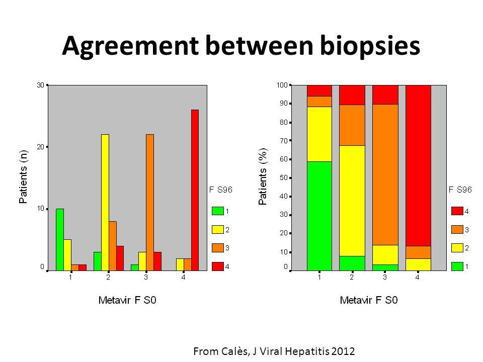 Agreement between biopsies