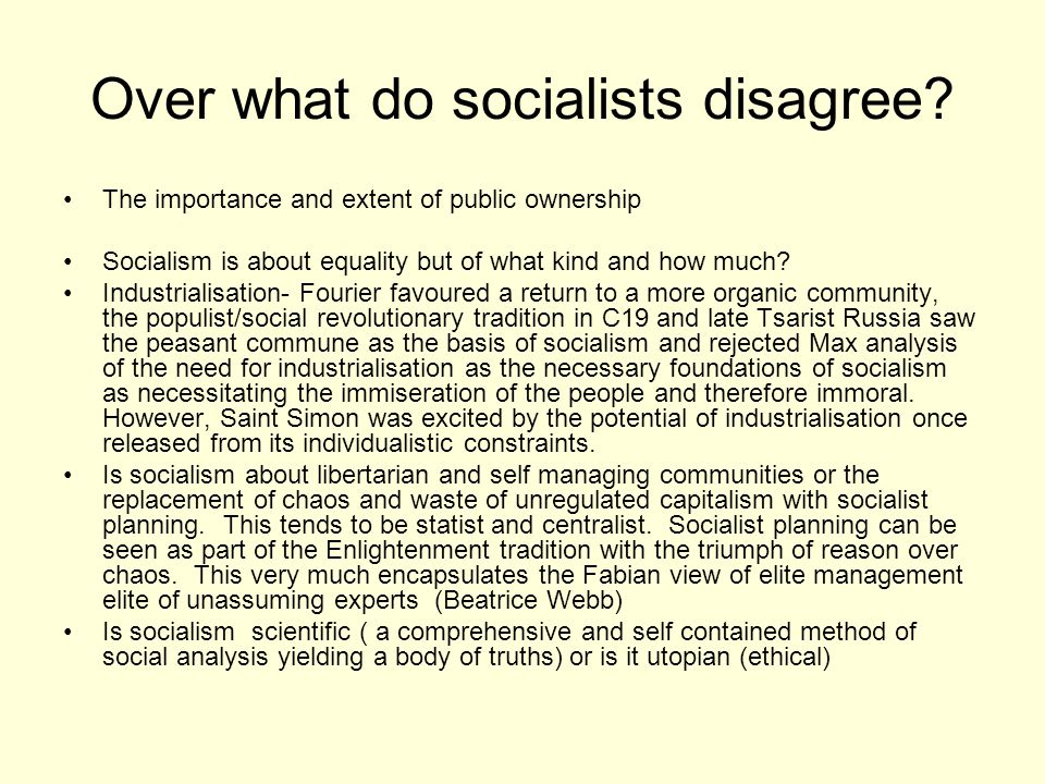 Over what do socialists disagree