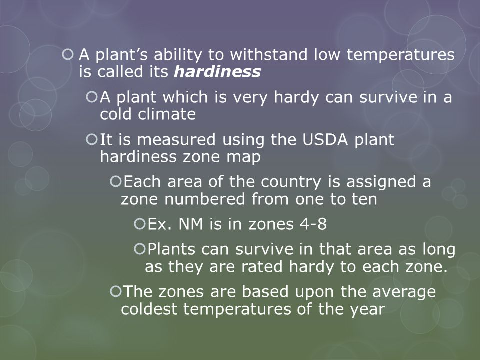 A plant's ability to withstand low temperatures is called its hardiness