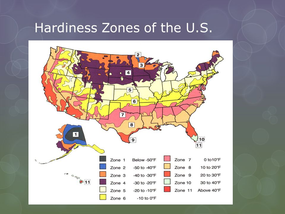 Hardiness Zones of the U.S.