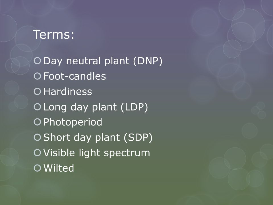 Terms: Day neutral plant (DNP) Foot-candles Hardiness