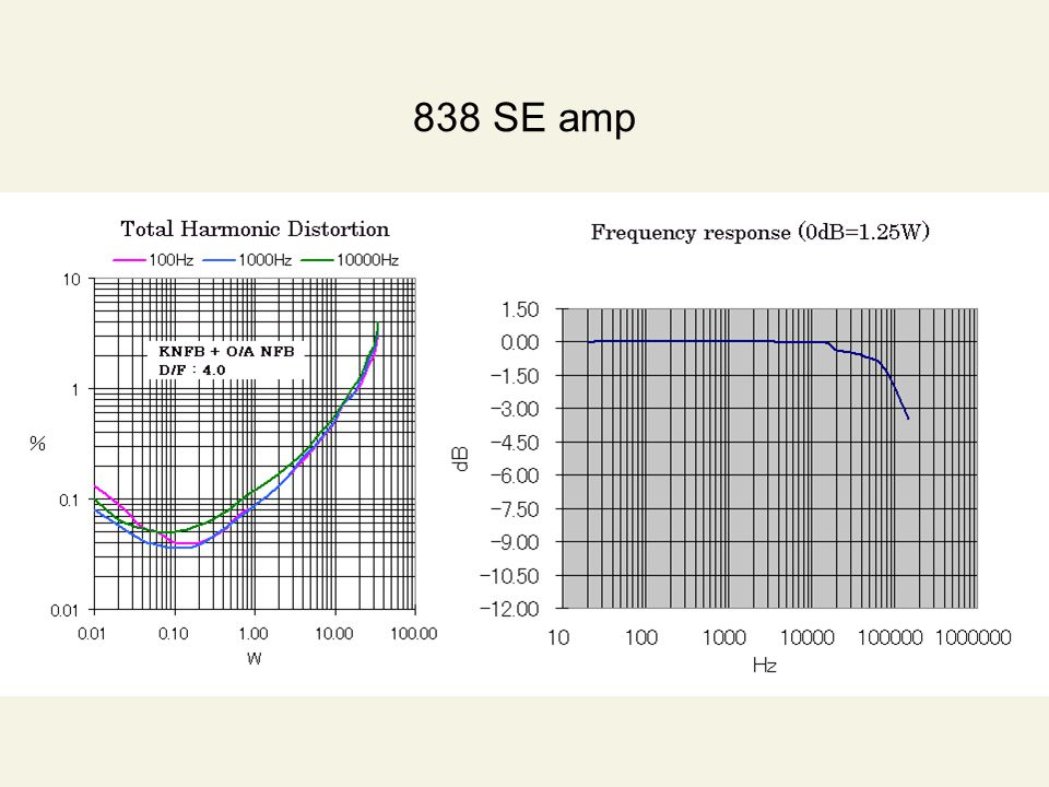 838 SE amp