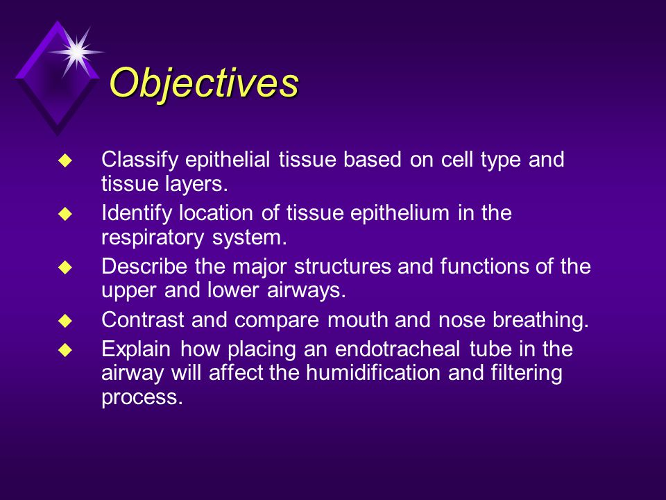 Objectives Classify epithelial tissue based on cell type and tissue layers. Identify location of tissue epithelium in the respiratory system.