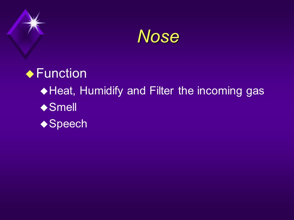 Nose Function Heat, Humidify and Filter the incoming gas Smell Speech