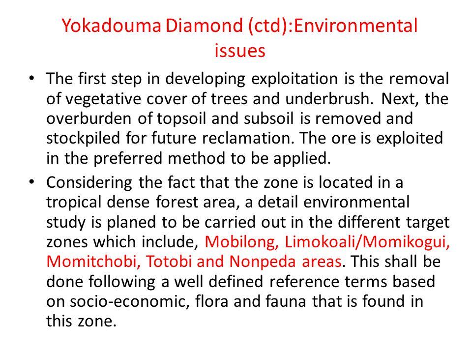 Yokadouma Diamond (ctd):Environmental issues