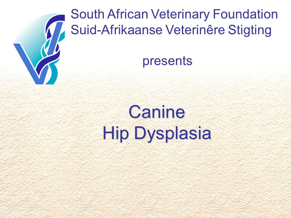 South African Veterinary Foundation