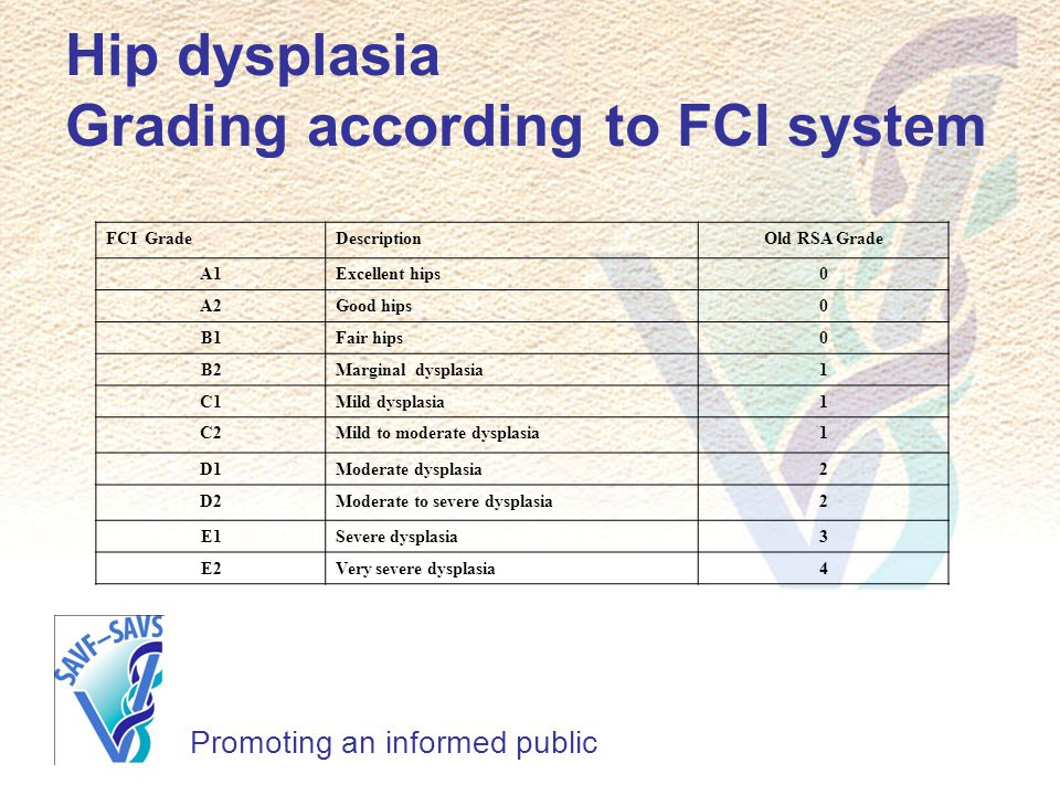 Hip dysplasia Grading according to FCI system