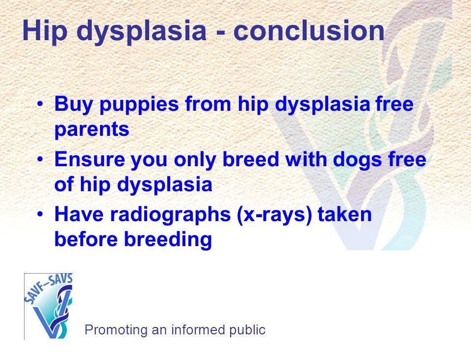 Hip dysplasia - conclusion