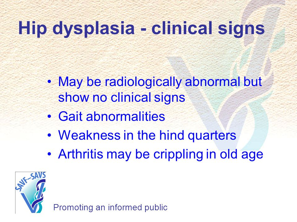 Hip dysplasia - clinical signs