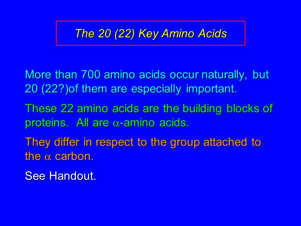 The 20 (22) Key Amino Acids More than 700 amino acids occur naturally, but 20 (22 )of them are especially important.