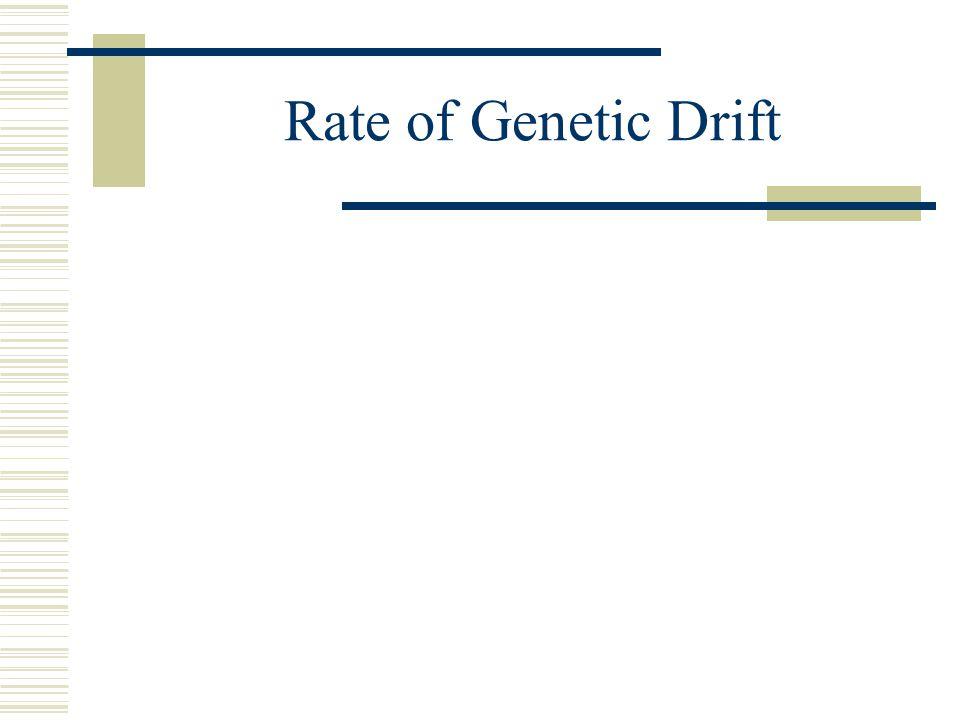 Rate of Genetic Drift