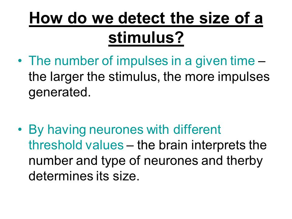 How do we detect the size of a stimulus