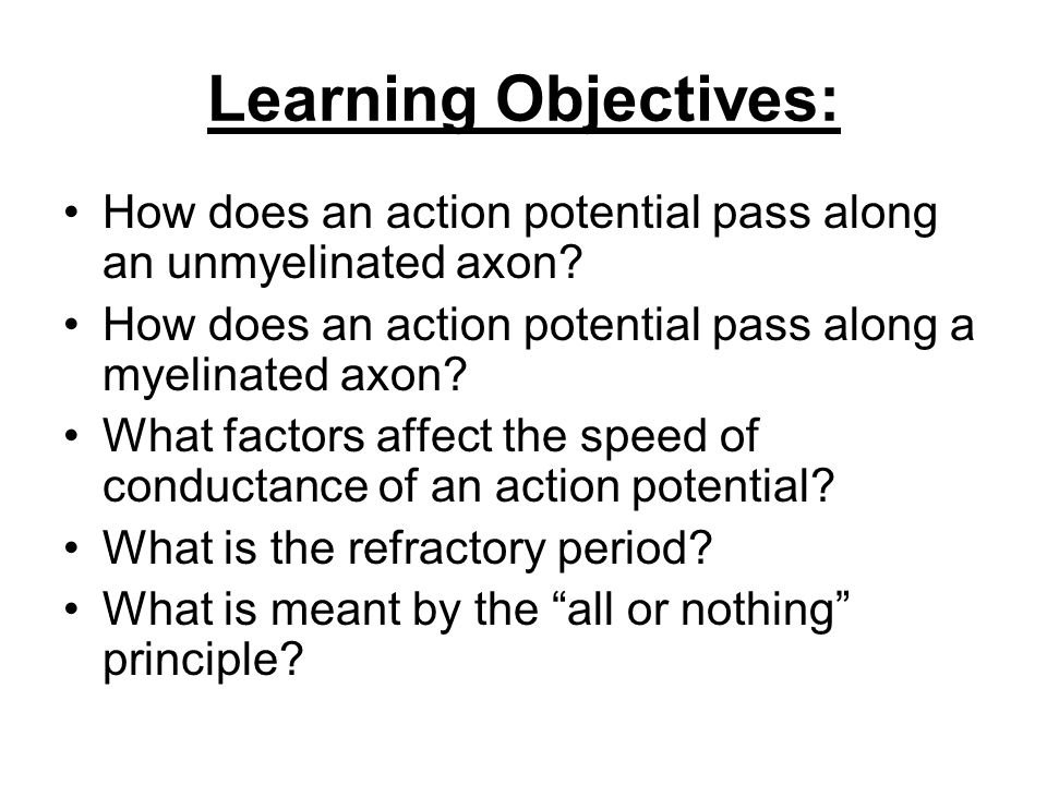 Learning Objectives: How does an action potential pass along an unmyelinated axon How does an action potential pass along a myelinated axon