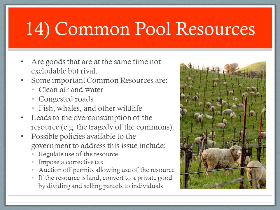 14) Common Pool Resources