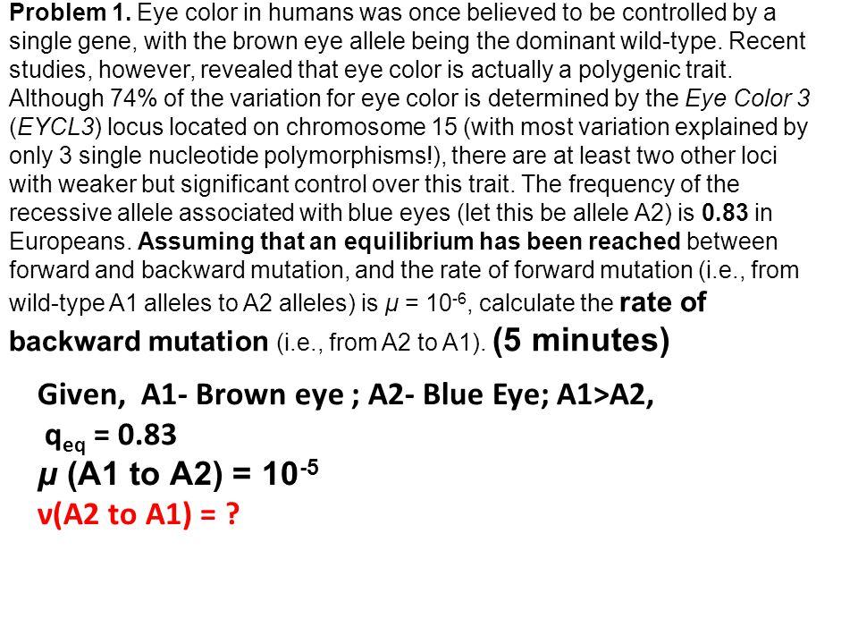 Given, A1- Brown eye ; A2- Blue Eye; A1>A2, qeq = 0.83