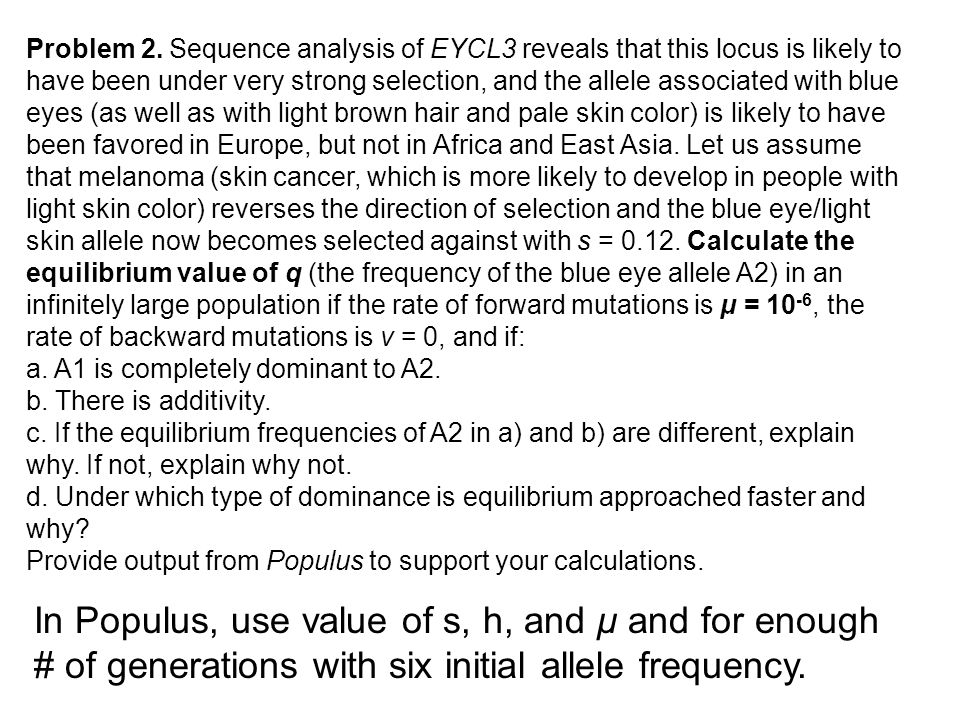 Problem 2. Sequence analysis of EYCL3 reveals that this locus is likely to have been under very strong selection, and the allele associated with blue eyes (as well as with light brown hair and pale skin color) is likely to have been favored in Europe, but not in Africa and East Asia. Let us assume that melanoma (skin cancer, which is more likely to develop in people with light skin color) reverses the direction of selection and the blue eye/light skin allele now becomes selected against with s = 0.12. Calculate the equilibrium value of q (the frequency of the blue eye allele A2) in an infinitely large population if the rate of forward mutations is μ = 10-6, the rate of backward mutations is ν = 0, and if: