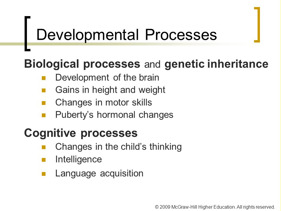 Developmental Processes