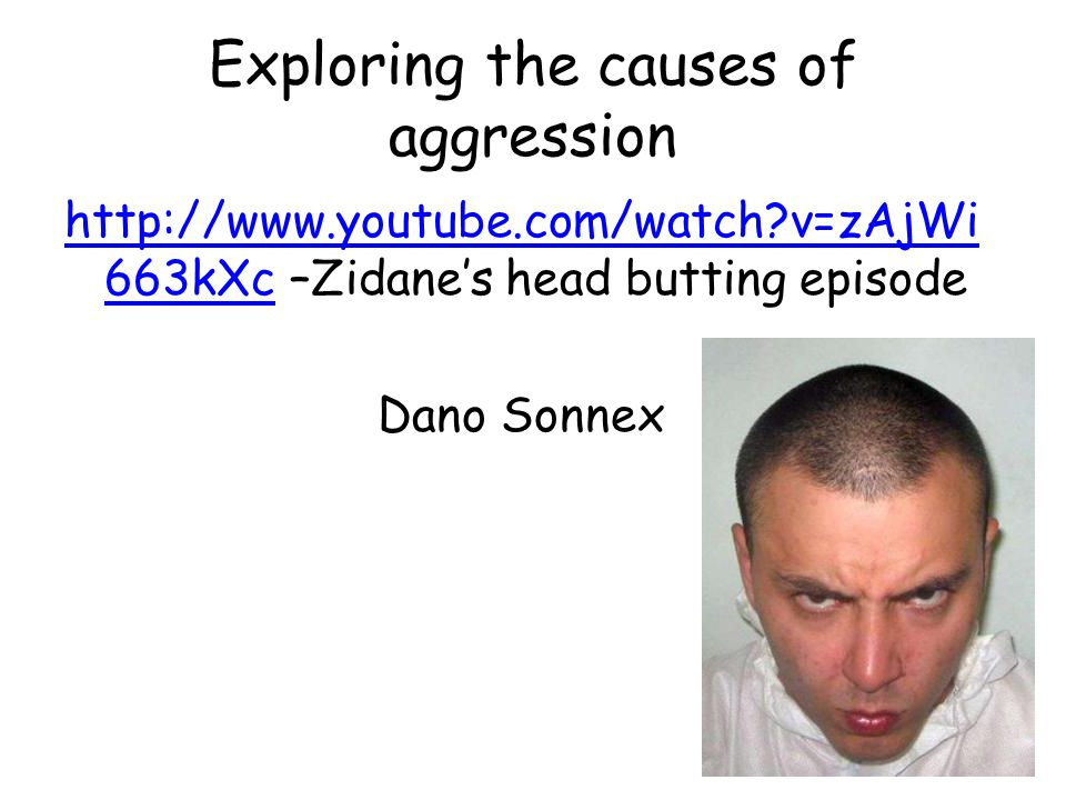 Exploring the causes of aggression
