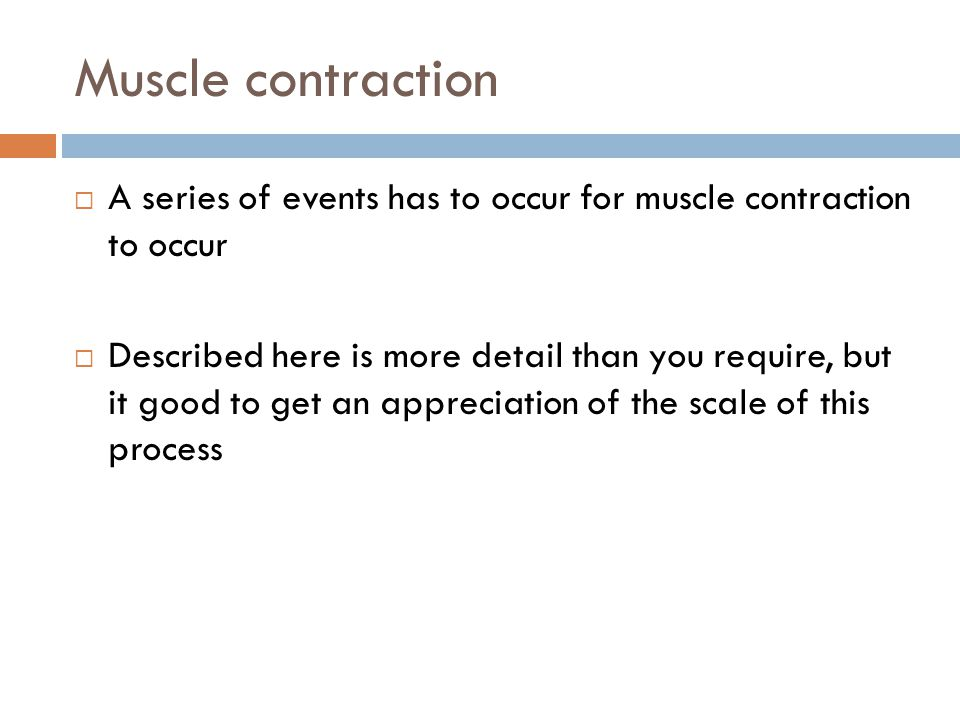 Muscle contraction A series of events has to occur for muscle contraction to occur.