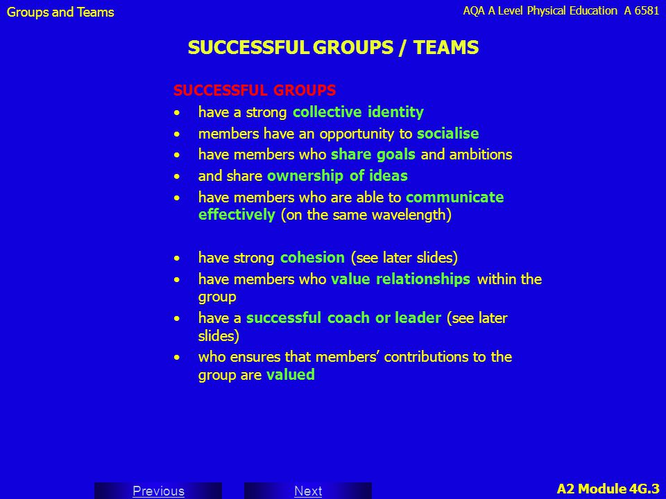 SUCCESSFUL GROUPS / TEAMS