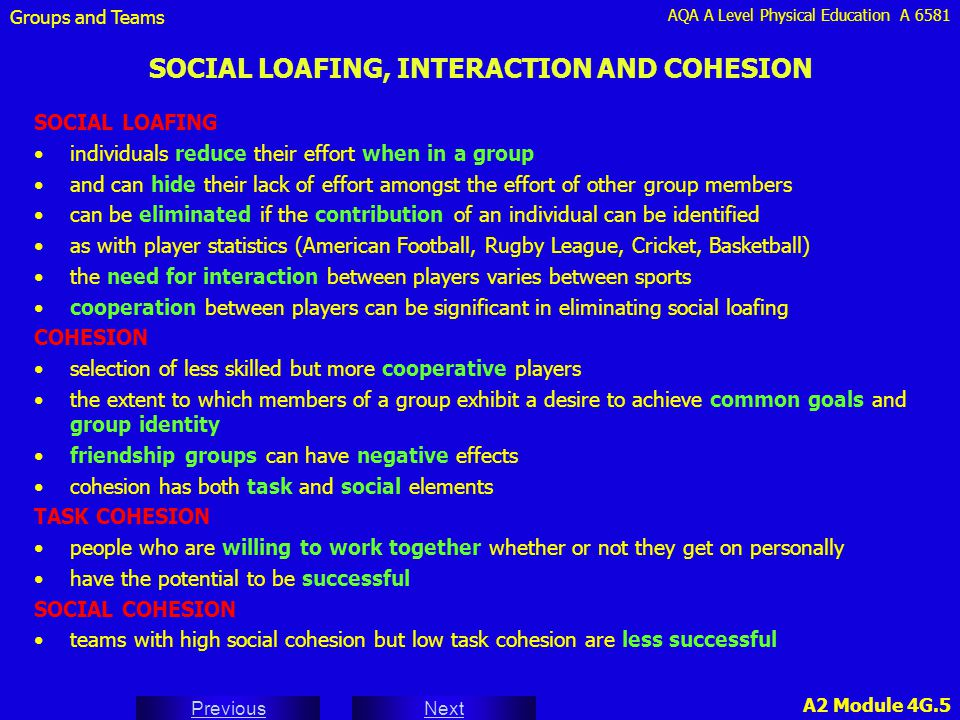SOCIAL LOAFING, INTERACTION AND COHESION