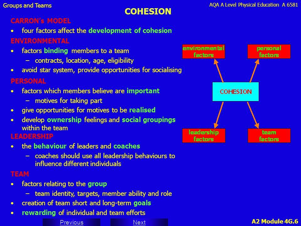 COHESION CARRON's MODEL