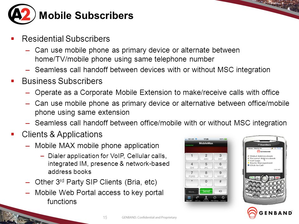 Mobile Subscribers Residential Subscribers Business Subscribers