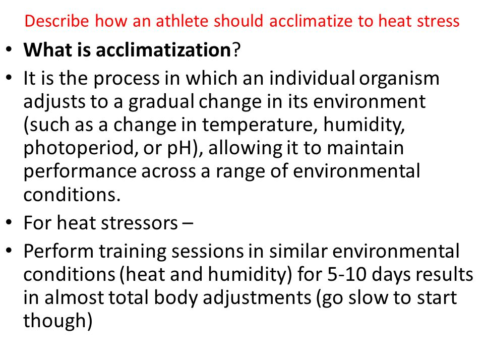 Describe how an athlete should acclimatize to heat stress