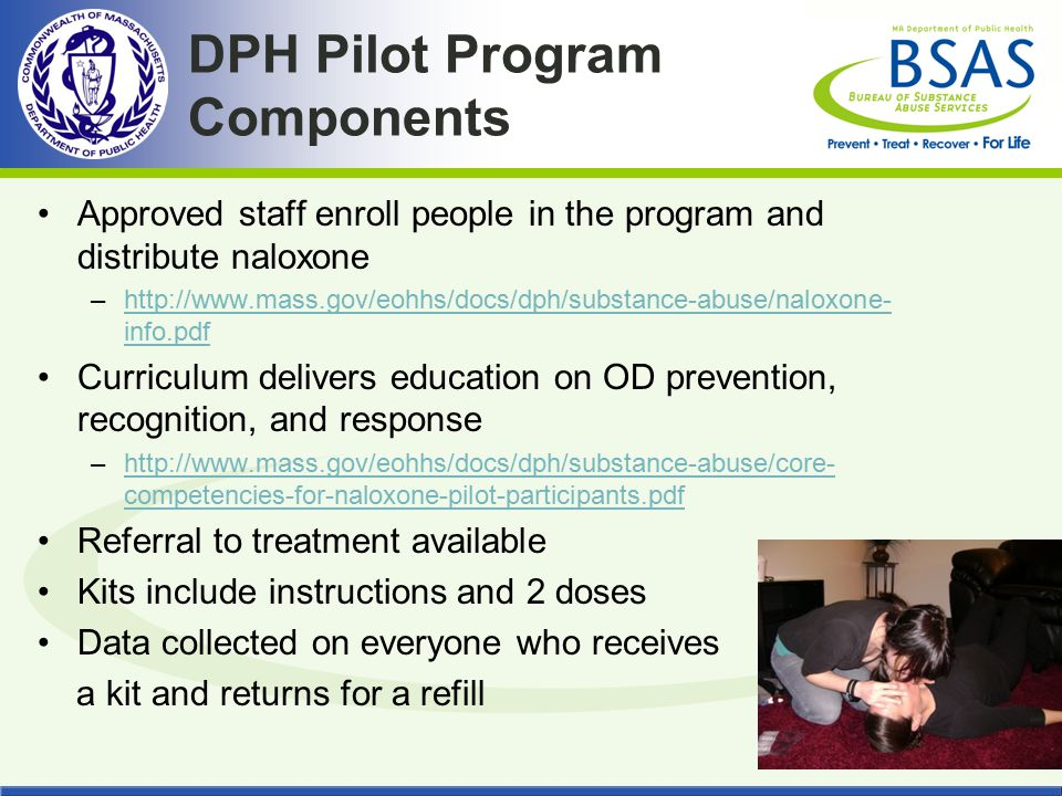 DPH Pilot Program Components