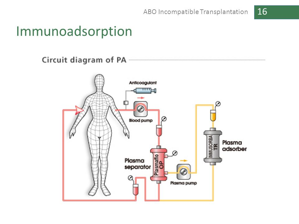 Immunoadsorption CAN MAKE DIAGRAM FROM PREVIOUS TWO DIAGRAMS