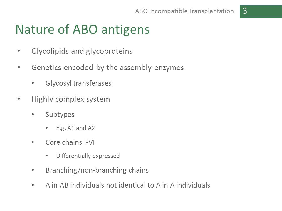 Nature of ABO antigens Glycolipids and glycoproteins