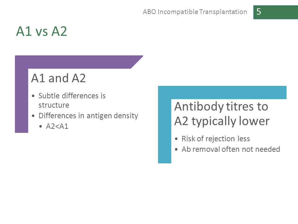 A1 vs A2 A1 and A2 Antibody titres to A2 typically lower