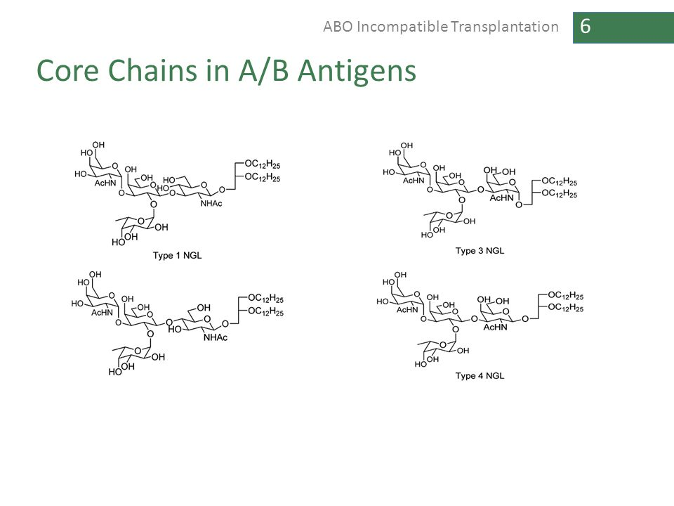 Core Chains in A/B Antigens