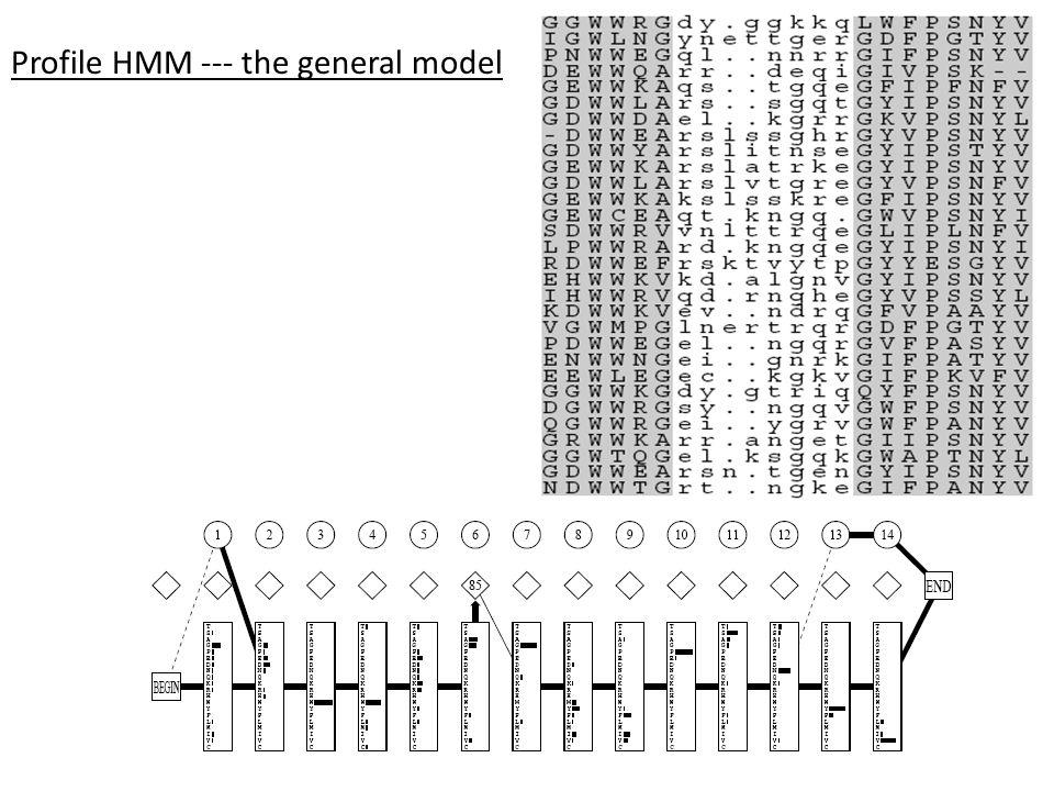 Profile HMM --- the general model