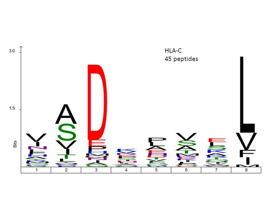 HLA-C 45 peptides