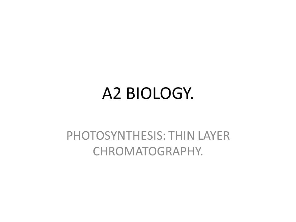 PHOTOSYNTHESIS: THIN LAYER CHROMATOGRAPHY.