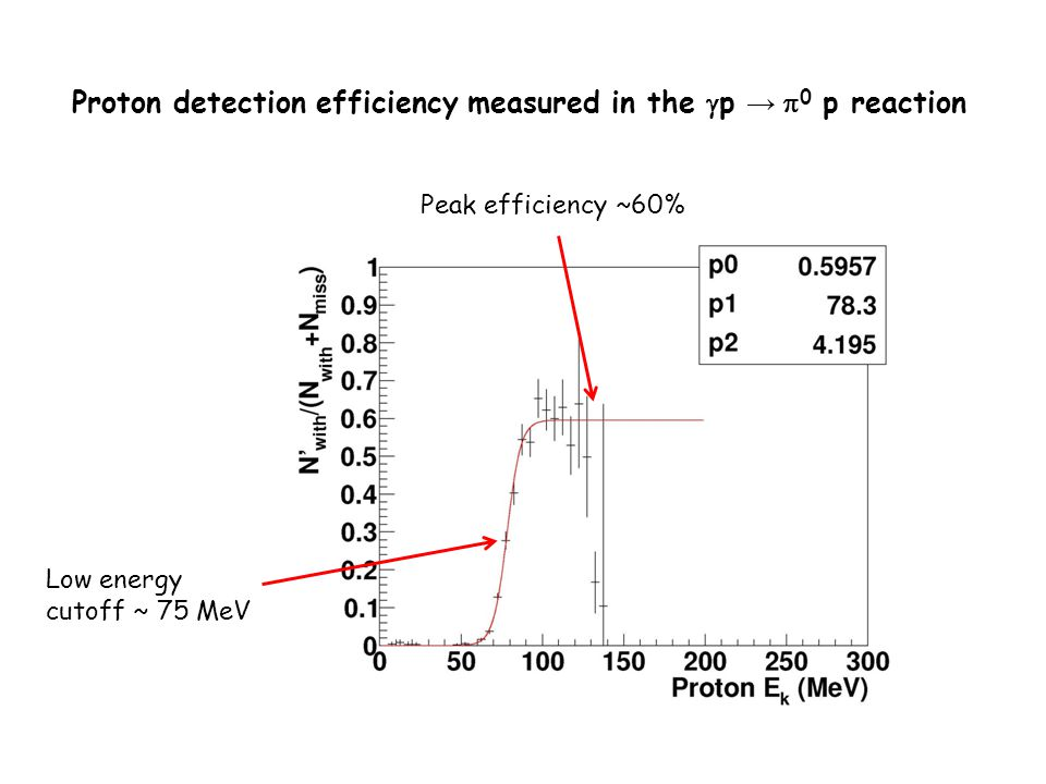 Proton detection efficiency measured in the gp → p0 p reaction
