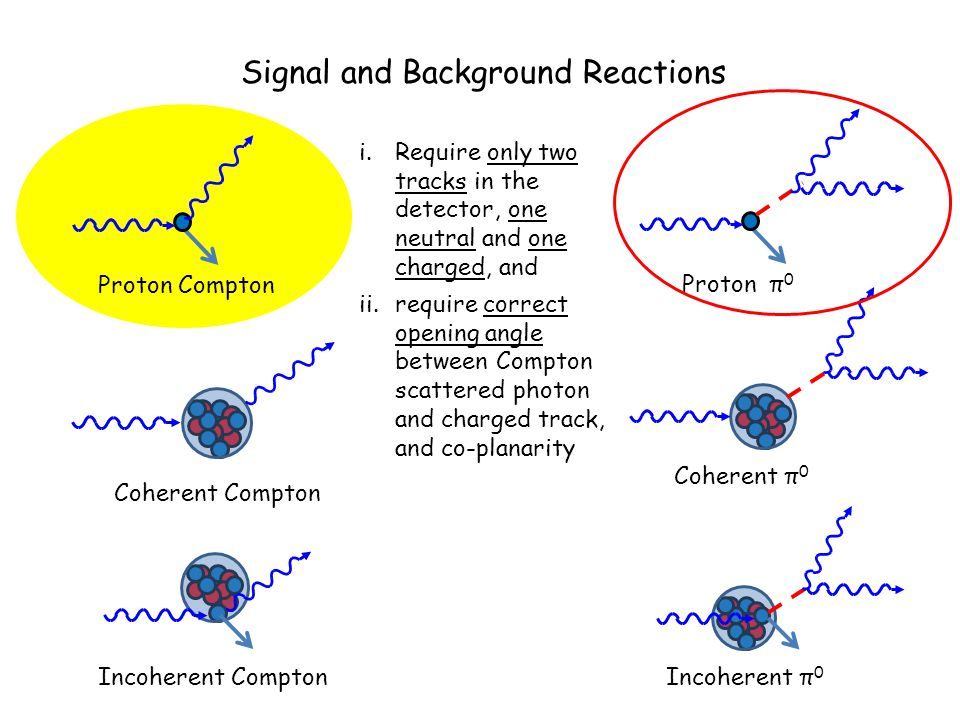 Signal and Background Reactions