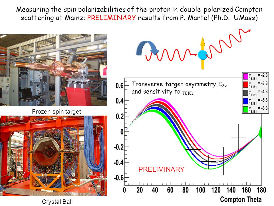 Measuring the spin polarizabilities of the proton in double-polarized Compton scattering at Mainz: PRELIMINARY results from P. Martel (Ph.D. UMass)