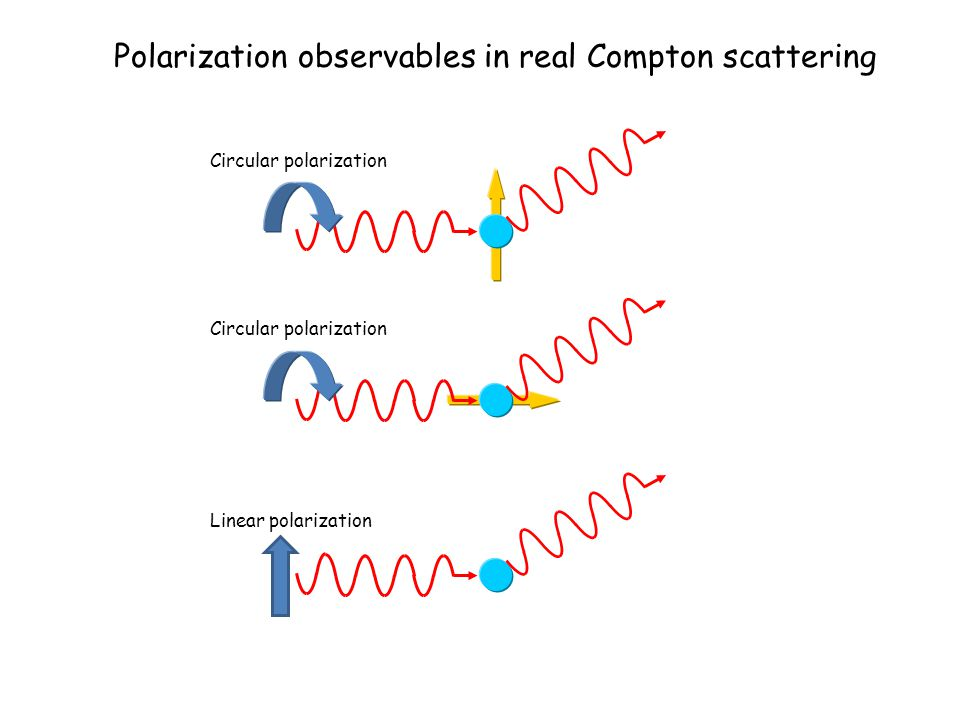 Polarization observables in real Compton scattering